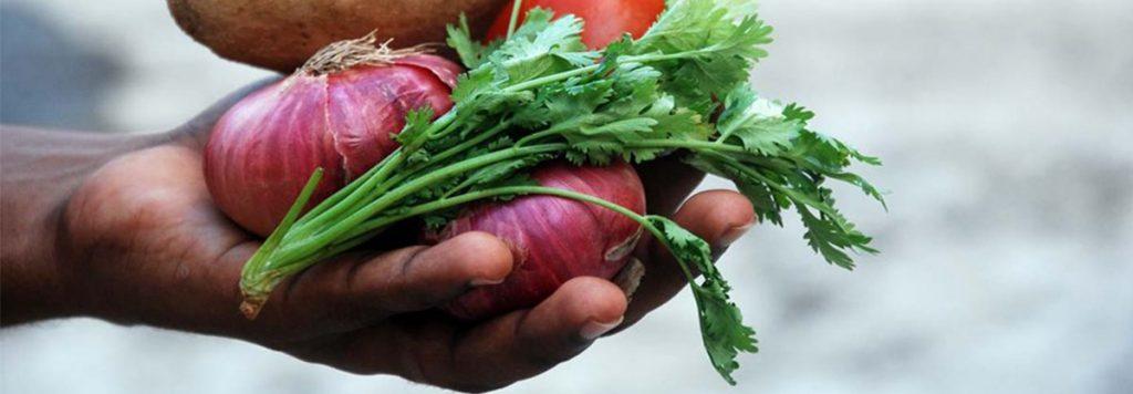 Hand full of Vegetables