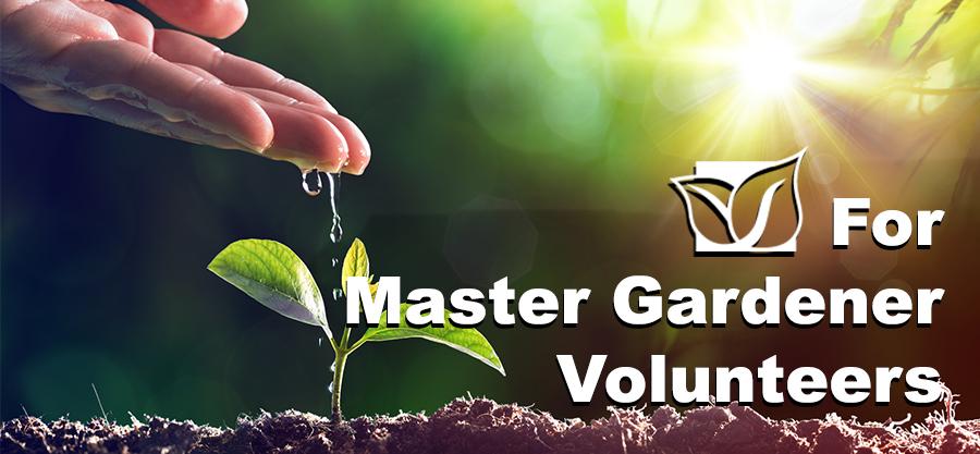 For Master Gardener Volunteers
