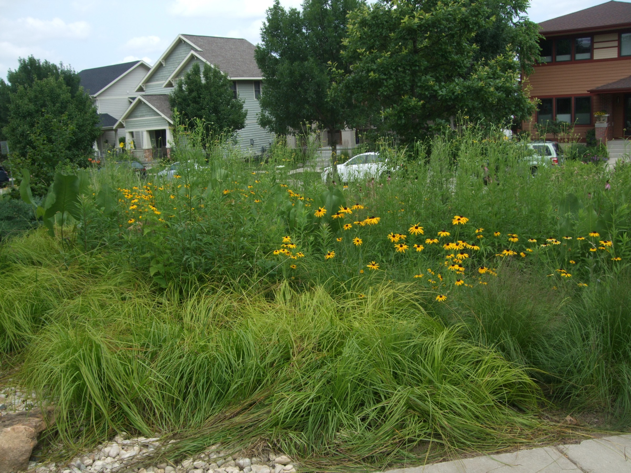 Examples of sustainable landscape design landscape for Garden design examples