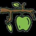 image for fruit module