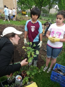 Master Gardeners planting with elementary school students.