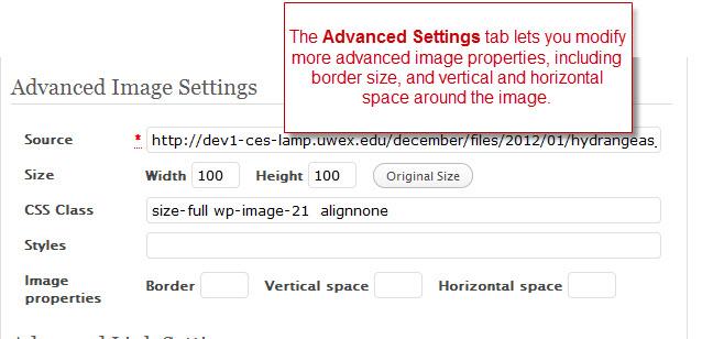 Advanced image editing screen