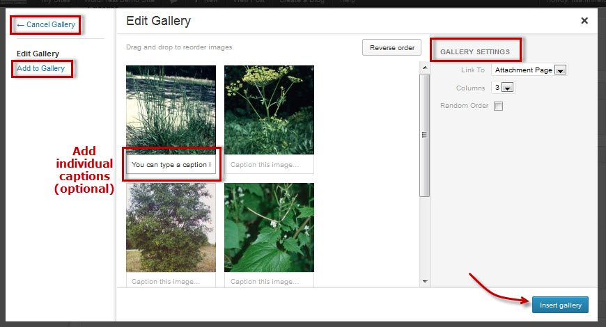 Add an Image Gallery to a Post or Page – WordPress Help