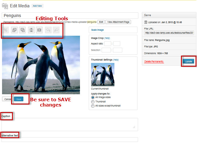 Image editing window