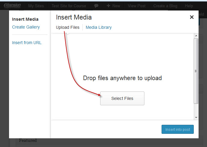 Select Files button on Insert Media screen