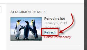 Refresh link on Insert Media screen