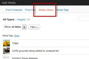 add-media-from-media-library