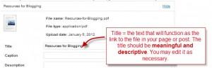 pdf-descriptive-title