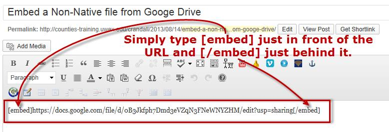 Embed a Non-Google Doc from Google Drive – WordPress Help